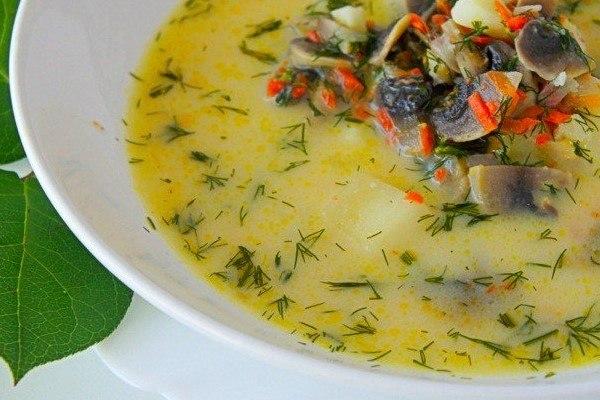 Рисовый суп с курицей и яйцом рецепт пошагово 89